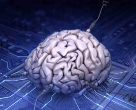 IBM hopes to simulate human brain in 6 Years | Brain and Management | Scoop.it