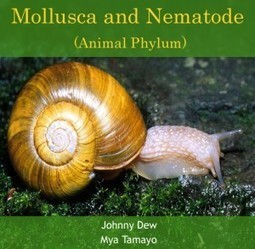 Mollusca and Nematode (Animal Phylum)   E-books on Biology   E-Books India   Scoop.it