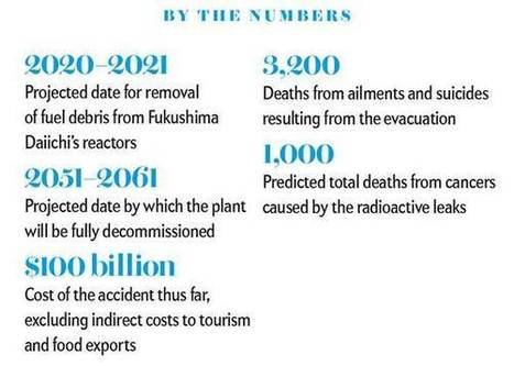 5 Years Later, the Fukushima Nuclear Disaster Site Continues to Spill Waste | Fukushima | Scoop.it