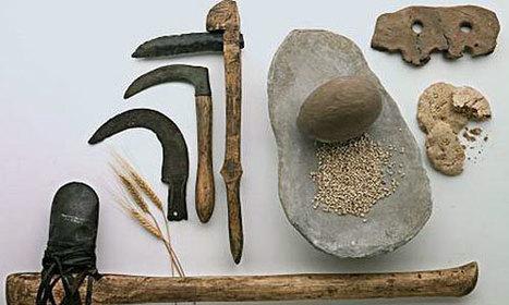PNAS. Hace 7.000 años, las mujeres se trasladaban a vivir donde trabajaban susparejas.   Aux origines   Scoop.it
