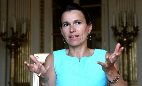 Les grands dossiers du ministère de la Culture pour 2014 - Information - France Culture | Bibliothèques en ligne | Scoop.it