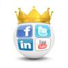 Médias sociaux, réseaux sociaux, SMO, SMA, SMM…