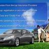 auto insurance fremont