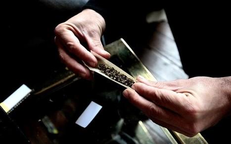 Uruguay opposition demands marijuana referendum | Alcohol & other drug issues in the media | Scoop.it
