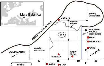 Une mandibule de - 500 000 ans, site de Mala Balanica en Serbie | Aux origines | Scoop.it