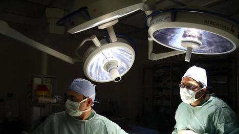 Donatori di organi over 80. La nuova frontiera dei trapianti | San Carlo News | Scoop.it