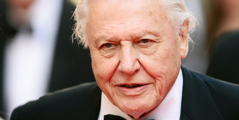 Sir David Attenborough Says Humans May Be An Endangered Species - Huffington Post | wildlife | Scoop.it
