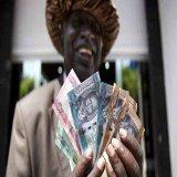 Analyses pour une Souveraineté Monétaire en Afrique | Zone Franc CFA et Croissance Économique | Actualités Afrique | Scoop.it