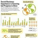 Social business: Importance is growing but progress is slow (Infographic) | Enterprise Social Software : news & best practices by blueKiwi | Scoop.it