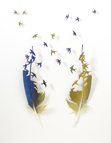 Flights of Fancy: Bird Feather Art by Chris Maynard | Food for Pets | Scoop.it
