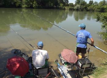 Pollution chimique : les poissons contaminés en Garonne | Toxique, soyons vigilant ! | Scoop.it