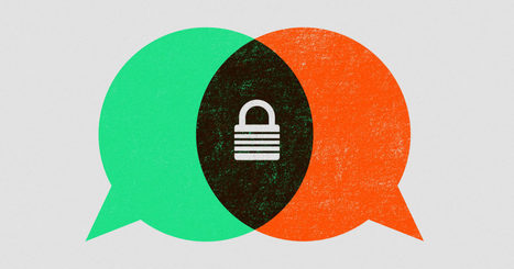 With Allo and Duo, Google finally encrypts conversations end-to-end | Technoculture | Scoop.it