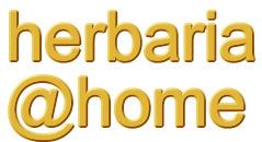herbarium@home project | Herbaria | Scoop.it