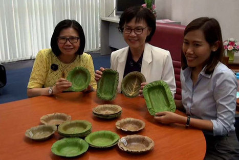 University develops leak-proof food bowls from leaves | Design and innovation | Scoop.it