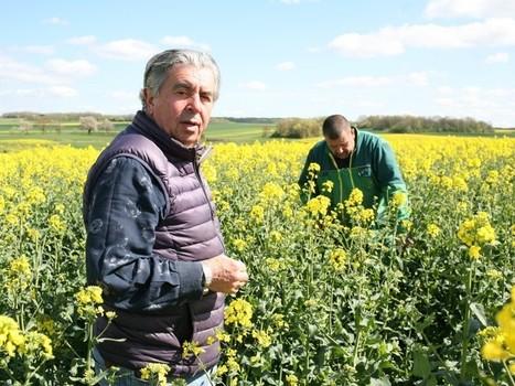 «Médecins de la terre», ils aident les paysans à produire sans pesticides - Rue89 | Chimie verte et agroécologie | Scoop.it