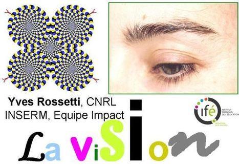 La vision | Symetrix | Scoop.it