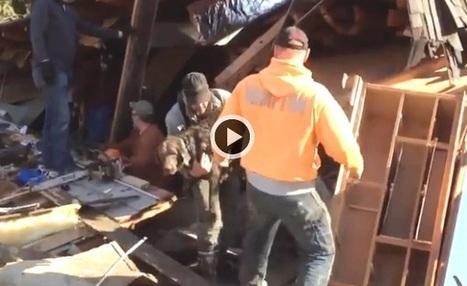 Un chien retrouvé vivant au millieu des décombres de sa maison (Vidéo du jour) | CaniCatNews-actualité | Scoop.it