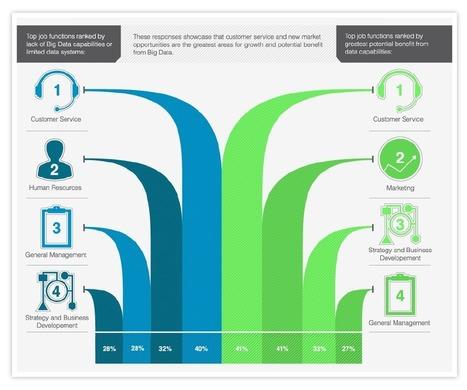 Infographie Big Data | Un outil décisionnel efficace pour vos collaborateurs | Le décisionnel pour Belharra | Scoop.it