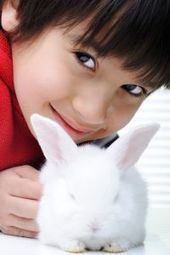 » Animals Bring Out Positive Social Behaviors in Kids with Autism - Psych Central News | Pet News | Scoop.it
