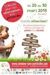 7 conseils pour jardiner sans pesticides | Chuchoteuse d'Alternatives | Scoop.it