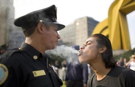ACLU: Legal Marijuana Means Police Can Focus On Real Crime | Gov and Law Rachel D | Scoop.it