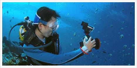 Quel appareil photo pour aller sous l'eau ? | L'oeil du photographe: actualité, évènements, matériel photo, conseil de réalisation | Scoop.it