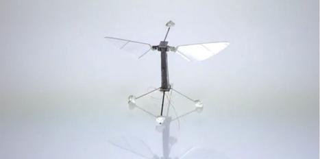 Des robots pollinisateurs pour remplacer les abeilles | Apiculture et protection de l'environnement | Scoop.it