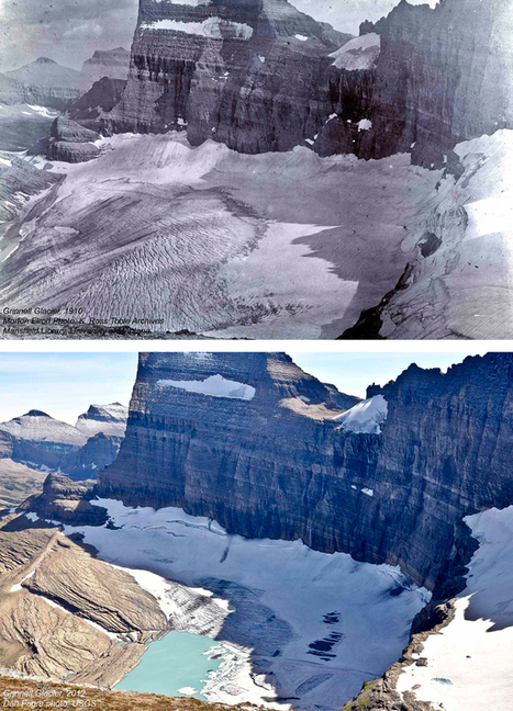 Before and After Photos Reveal How Much Glaciers Have Melted in 100 Years | Grade 6 - Diversity of Living Things | Scoop.it