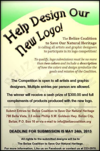 Belize Coalition Logo Contest   Creative Designer, and Web Developer   Scoop.it