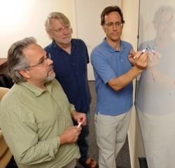 New insight into impulse control   Research News @ Vanderbilt   Vanderbilt University   Brain Momentum   Scoop.it