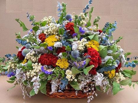 Myfloralkart.com launches New Floral Arrangements for Bright Winters   Myfloralkart.com   Scoop.it
