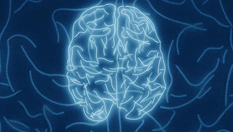 This Is Your Brain's Default Setting--Here's How And When To Change It | Living Leadership | Scoop.it