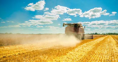 Agriculture du futur : produire plus avec moins grâce à l'utilisation des données | Questions de développement ... | Scoop.it