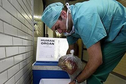 La Belgique leader mondial de donneurs d'organes | Belgitude | Scoop.it