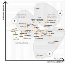 Sélection de 5 réseaux sociaux d'entreprise spécialisés | Management de l'information stratégique | Scoop.it