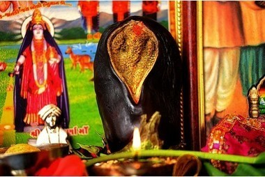 Worshippers pray to aubergine that looks like a Hindu god | Quite Interesting News | Scoop.it