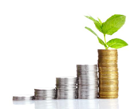 Partager les risques autour des chaînes de valeur pour financer l'agriculture en Afrique | Questions de développement ... | Scoop.it