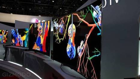 Hands On: I Just Fell In Love With @LGUS Flexible 4K OLED TVs - Gizmodo | #Technology | Scoop.it
