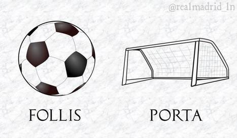 Fútbol en latín   Fundamentos Léxicos   Scoop.it