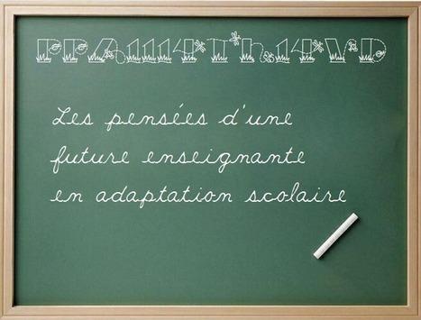 PPA1114tH14VD: Les TICs en adaptation scolaire - 2/3 | Une école adaptée à tous les élèves | Scoop.it