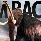 Mammoths May Be Roaming the World In Five Years | Strange days indeed... | Scoop.it