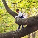 Risk and Reward in Nature Play |  Ecology Global Network | Tree Preservation Planning | Scoop.it