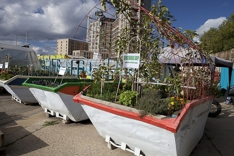 Urban farming in London – without Chelsea tractors and designer wellies | Vertical Farm - Food Factory | Scoop.it
