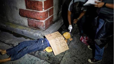 Over 300 NGOs call on the United Nations to take immediate action on the hundreds of extrajudicial killings of suspected drug offenders in the Philippines | ICEERS Ethnobotanical News | Scoop.it