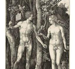 Cuando Eva encontró a Adán | Los ojos humanos y de calamares evolucionaron a través de los mismos genes | Scoop.it
