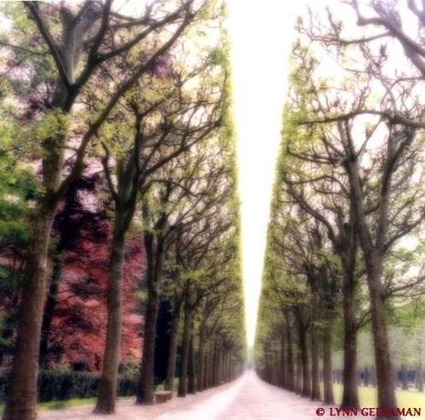 Le Parc de Sceaux : un lieu de détente aux portes de Paris | A visiter | Scoop.it