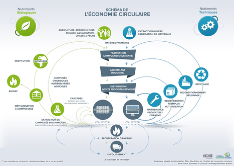 L'économie circulaire : synthèse du concept en un schéma | Innovations and insights fostering clean and sustainable development | Scoop.it