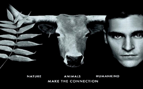 5 Life-Changing Animal Documentaries You Can Watch for Free Right Here! | Healthy eating | Scoop.it