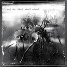 Waterglass - ...And The Bleak Shall Inherit [CD] (2013) - Review - terrarelicta dark music webmagazine | 2013 Music Releases | Scoop.it