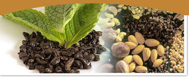 Black Pepper Exporters, Red Chilly Exporters, Dry Ginger Exporters, India. | rawtherspices | Scoop.it